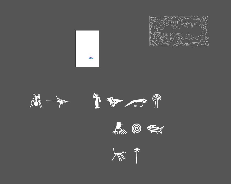 ubiq vector shapes nazca